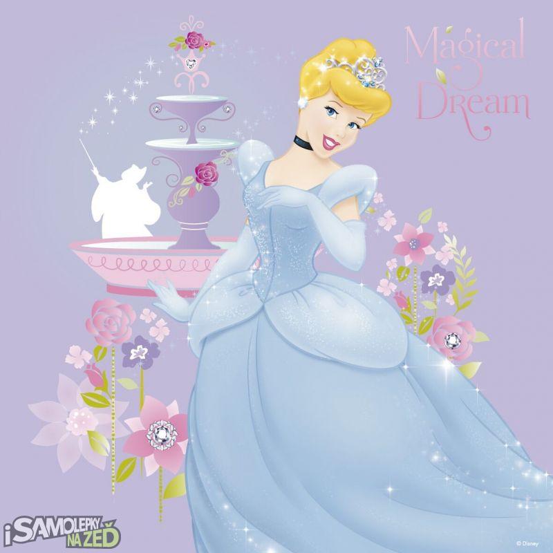 Dětské samolepky na zeď - Disney Princezny 2