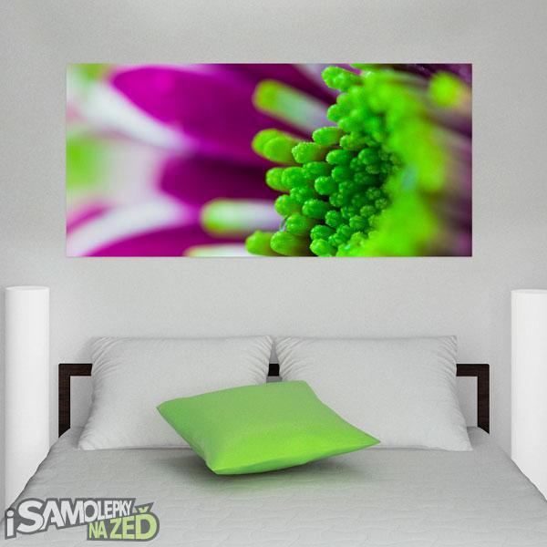 Samolepky na zeď - Flowers