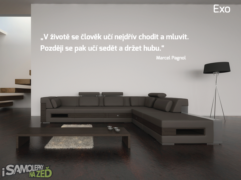 Samolepky na zeď - Samolepka na zeď - Vlastní text písmo Exo