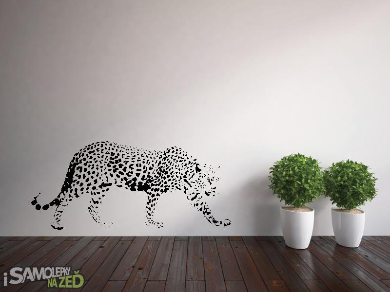 Samolepky na zeď - Gepard na lovu