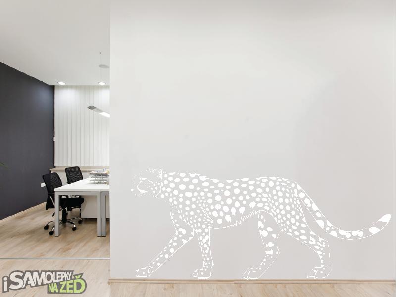 Samolepky na zeď - Samolepka na zeď - Gepard v2