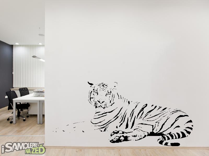 Samolepky na zeď - Samolepka na zeď - Ležící tygr