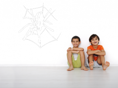 Samolepka na zeď - Pavouk