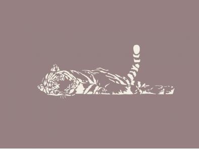 Spící tygr - výprodej